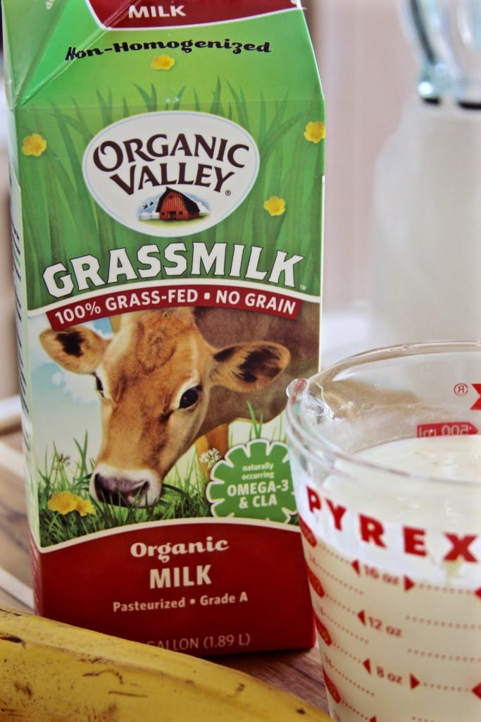Grass-fed Milk for Creamy Banana Chocolate Pudding