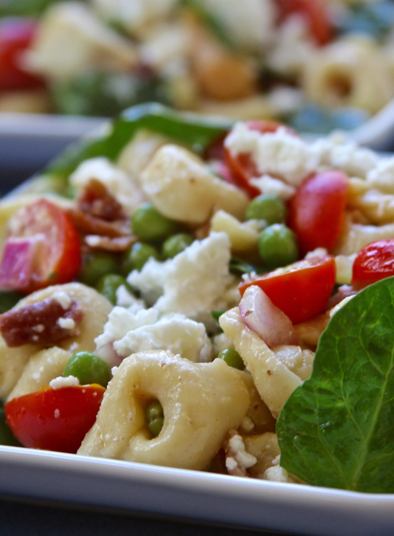 Bacon Belly Button Pasta Salad