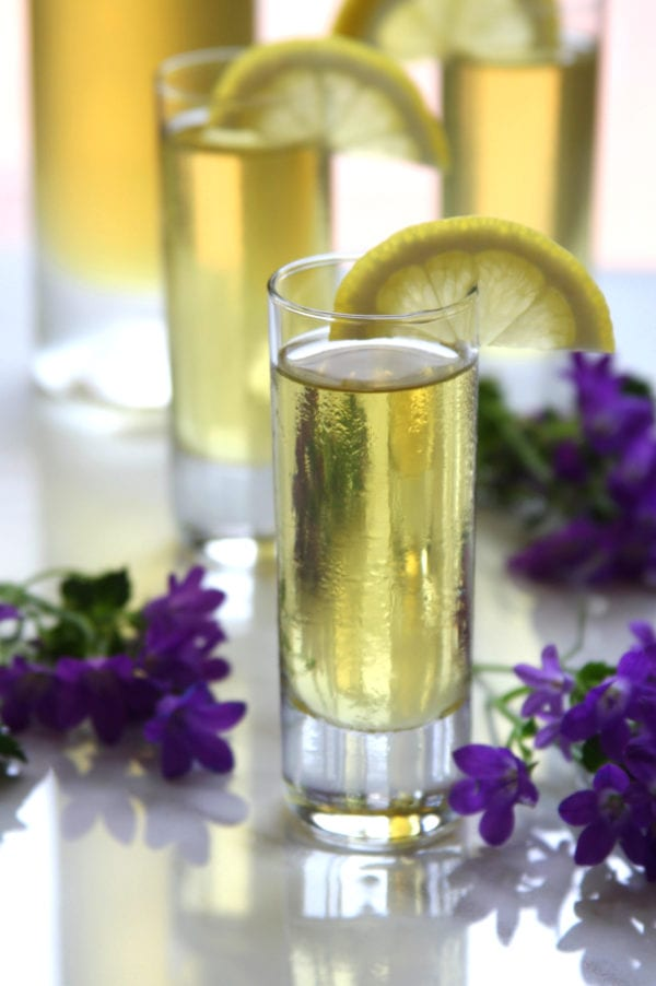 Homemade Limoncello recipe is absolutely divine and extremely easy to make. Perfect way to use all he lemons from your lemon tree. Makes a wonderful gift for lemon lovers.