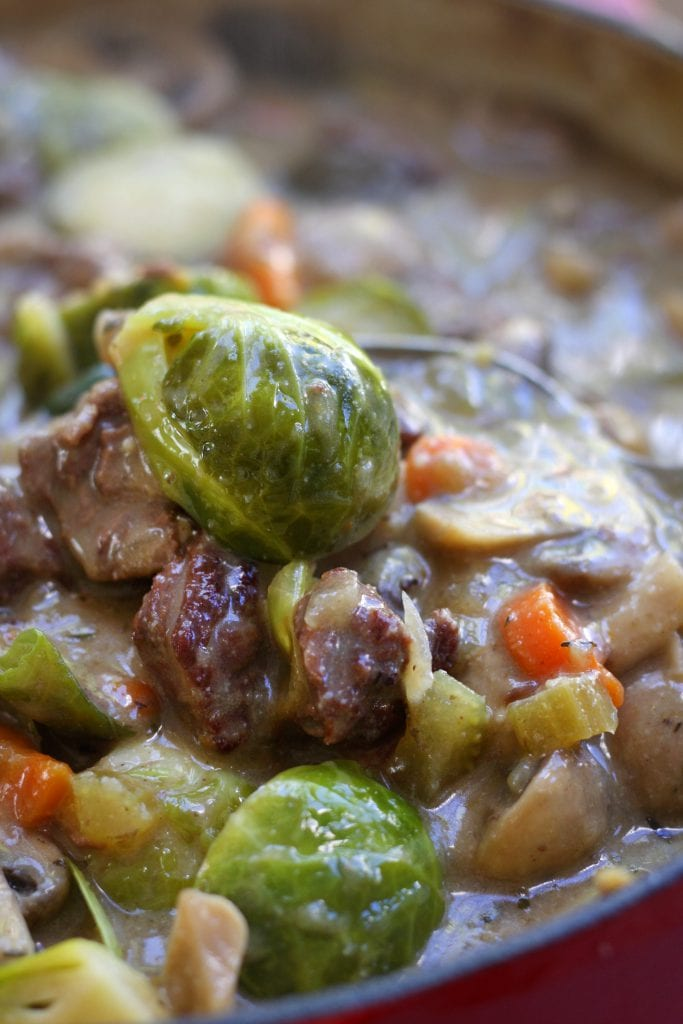 Beef and Brussels Sprouts Stew is a hearty and healthy winter meal. High in fiber and low on the glycemic index, this recipe is perfect for the diabetic to the winter weight watcher but tastes so good everyone gobble it up.