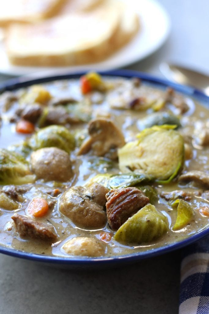 Beef and Brussels Sprouts Stew is a hearty and healthy winter meal. High in fiber, low on the glycemic index and gluten-free, this recipe is perfect for the diabetic to the winter weight watcher but tastes so good everyone will gobble it up.