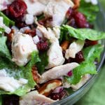Pecan Cranberry Chicken Salad