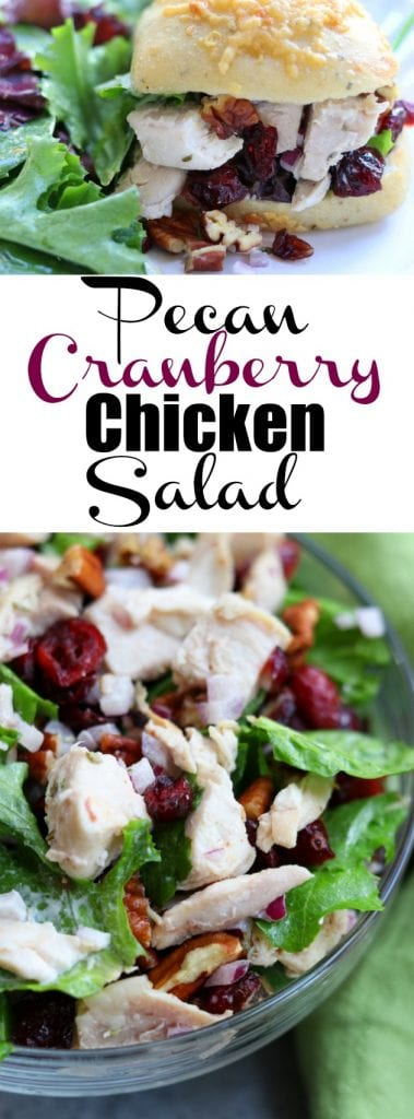 Pecan Cranberry Chicken Salad recipe makes the best light and tasty lunch nestled in your favorite bread. Sweet, creamy and savory, you will feel like you just had lunch at a sidewalk cafe. https://www.thefedupfoodie.com