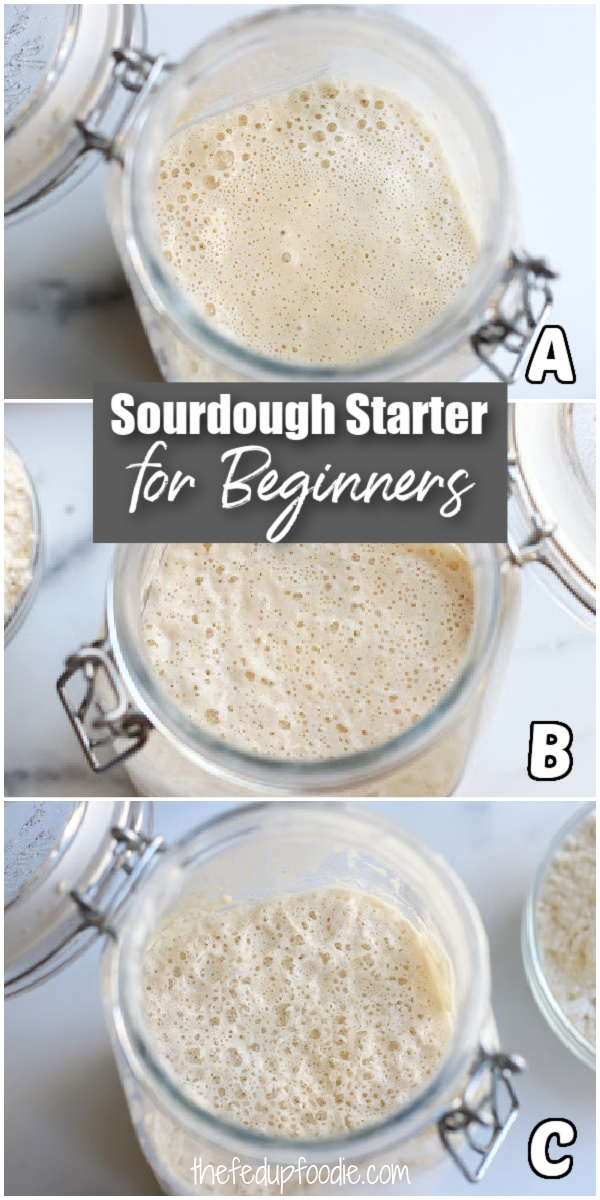 This Easy Sourdough Starter recipe creates gorgeously fluffy homemade products such as Sourdough Baguettes. Included are simple step by step instructions on how to start, feed and maintain Sourdough Starter that is perfect for beginners. #SourdoughStarterForBeginners #MaintainingSourdoughStarter #EasySourdoughStarterRecipe #SourdoughBreadStarterRecipe #HowToCareForSourdoughStarter #HowToFeedSourdoughStarter #feedingSourdoughStarter