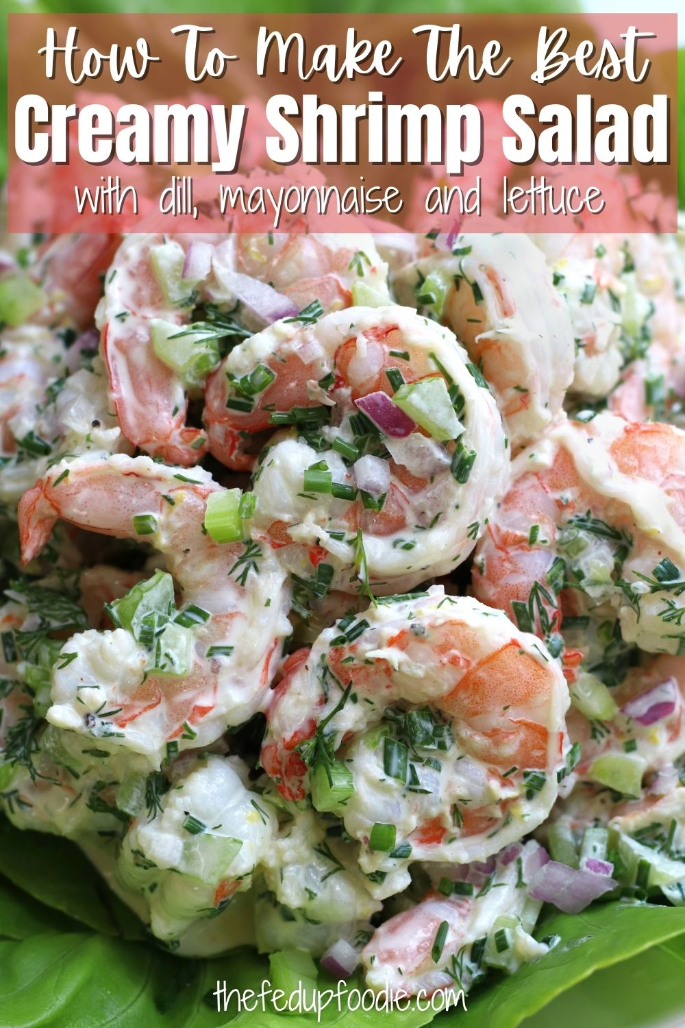 Easy Shrimp Salad with fresh dill, lemon, red onion and mayonnaise on a bed of lettuce. Fast and refreshing, this recipe is one of our favorite ways to eat dinner on hot summer days. #ShrimpSalad #ShrimpSaladRecipes #ShrimpSaladHealthy #ShrimpSaladRecipesLettuce #ShrimpSaladRecipesEasy #ShrimpSaladWithDill #ShrimpSaladWithMayonnaise #ShrimpSaladWithLettuce #ColdShrimpSaladRecipes #ClassicShrimpSalad